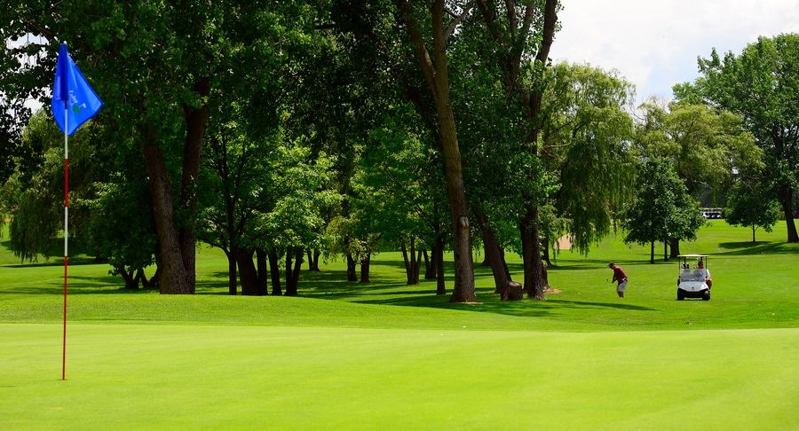 For the first time in recent years, Arlington Lakes Golf Course in Arlington Heights turned a profit this year.