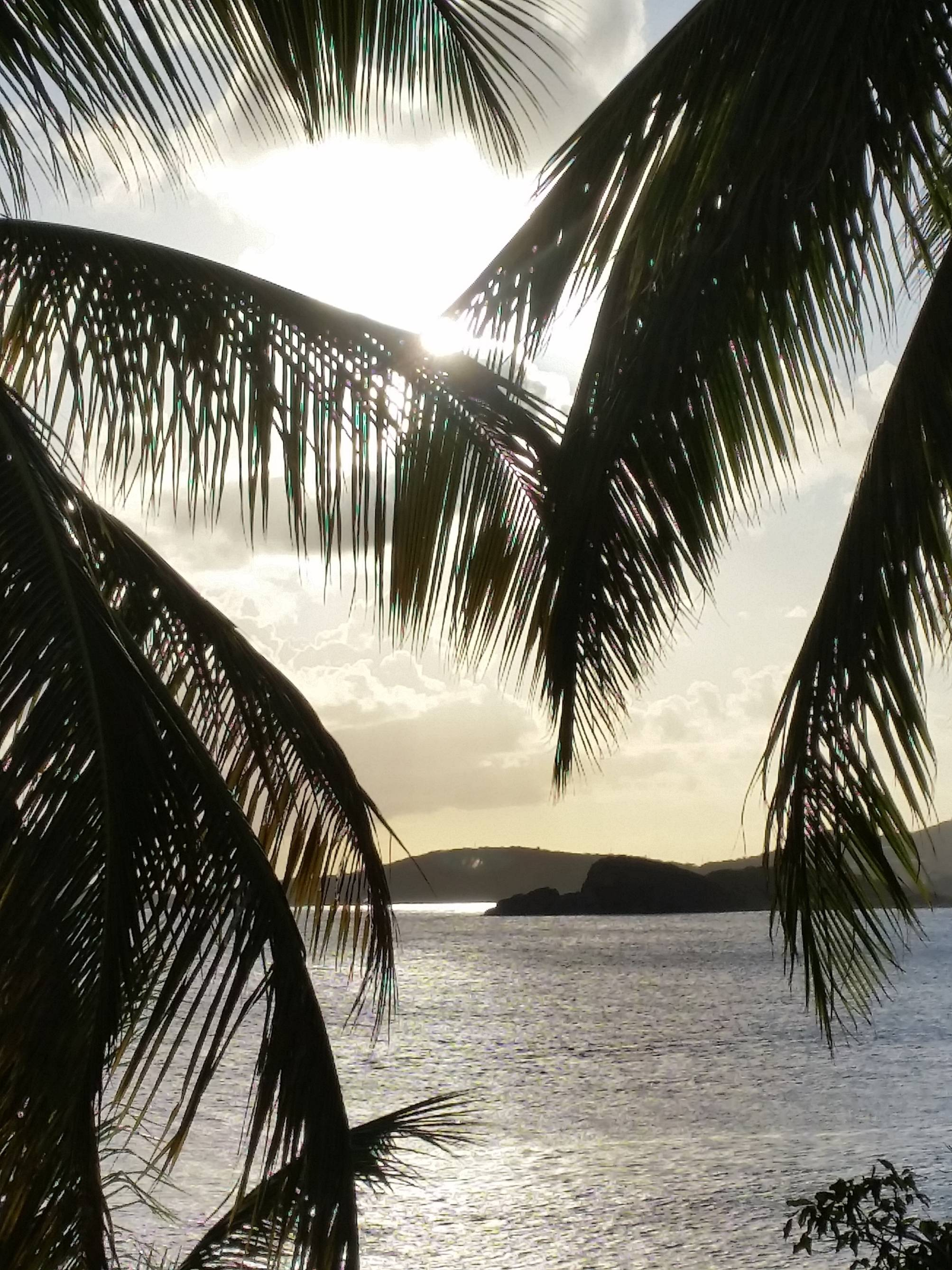 This photo was taken last February in St. Thomas, US Virgin Islands. The views from the resort pools were incredible. This is the view from the pool late in the afternoon.