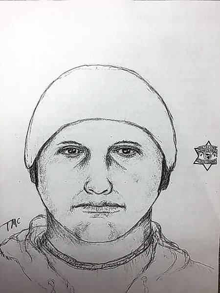 Rolling Meadows police released this sketch in January of a man who broke into a woman's apartment and sexually assaulted her. Police say they've found no evidence linking the case to the weekend slaying of Tiffany Thrasher just a few miles down Algonquin Road.