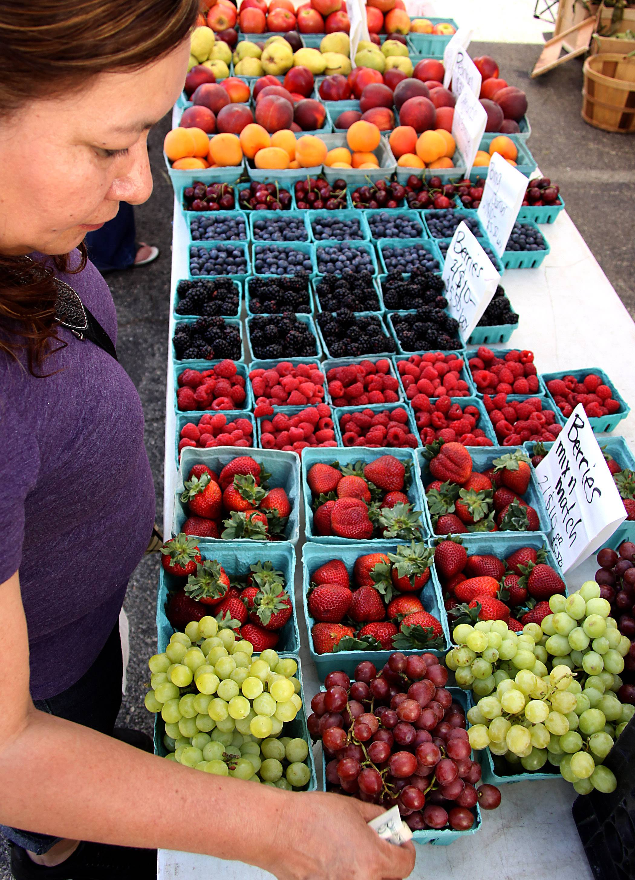 Leticia Ramirez of Elgin shops for fresh berries at the Windy Acres Farm Stand booth during the Harvest Market in downtown Elgin. The market opens for the season on Thursday, June 1.
