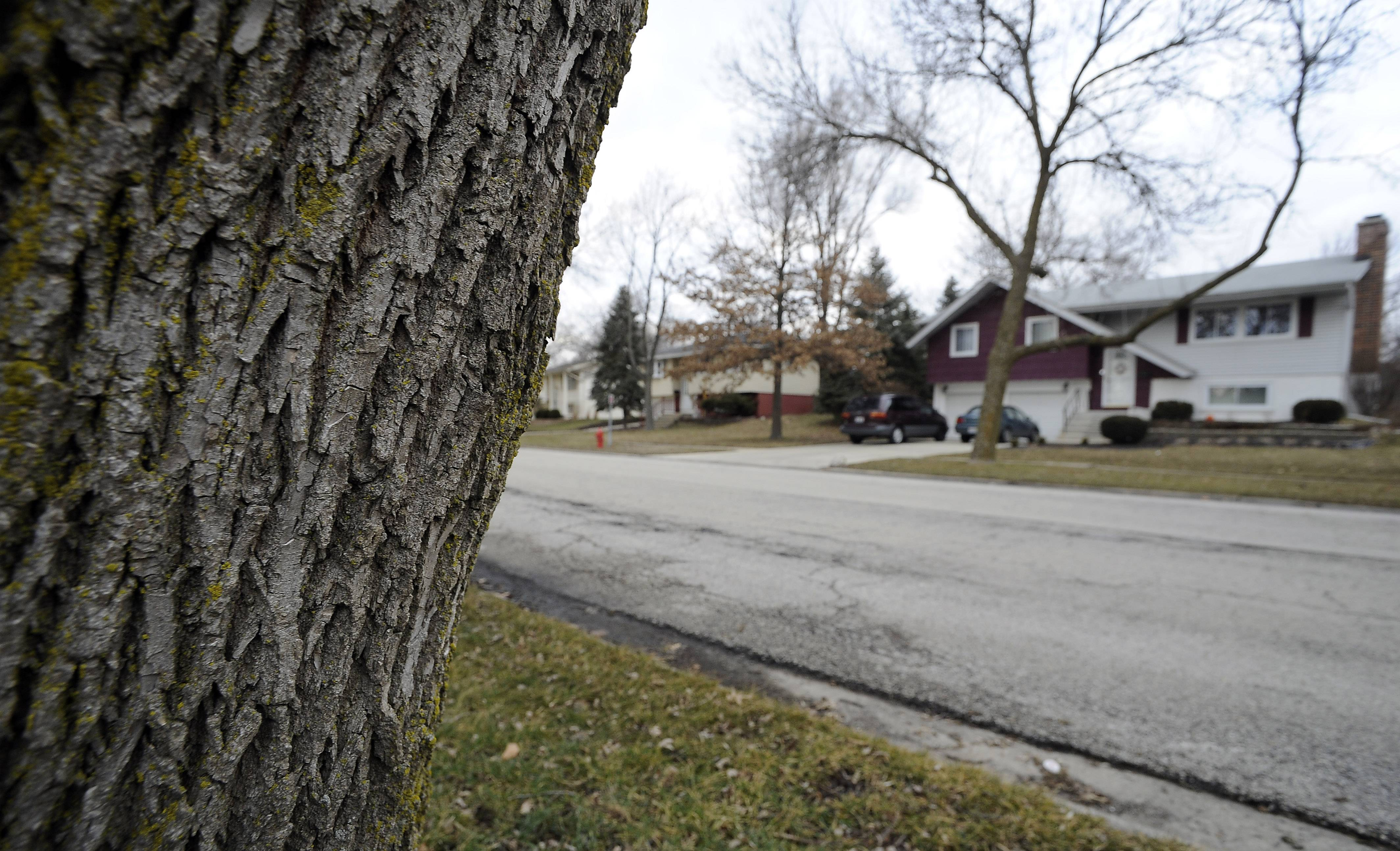 Schaumburg officials are considering a 3-cents-per-gallon motor fuel tax to help sustain the current funding levels for the repair and full reconstruction of local village streets.