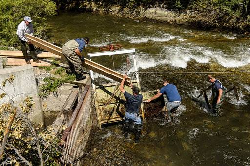 Workers put in a dam to divert and lower water levels in the Provo River, Tuesday May 30, 2017. A 4-year-old girl, her mother and a good Samaritan died after the child fell from a rock and was swept away in a cold, fast-moving river and several people jumped in to help her, authorities said Tuesday. The body of the child was found Tuesday about a mile down the Provo River. (Trent Nelson/The Salt Lake Tribune via AP)