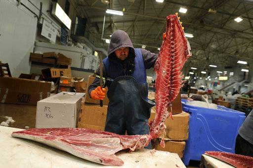 A fishmonger cuts the loins from a yellowfin tuna imported from South America at the New Fulton Fish Market in New York on Thursday, Dec. 14, 2017. More than 90 percent of all seafood that ends up on U.S. dinner tables is imported.