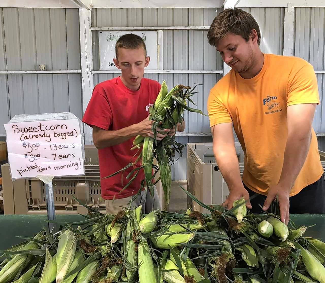 Constable: Summer sweet corn is here, but do you eat it correctly?