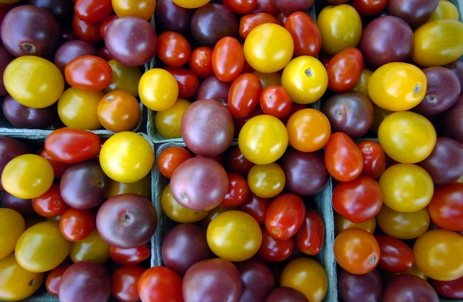Tomatoes of all shapes, sizes and colors line the farmers market in Barrington, just waiting to enrich your summertime experience.