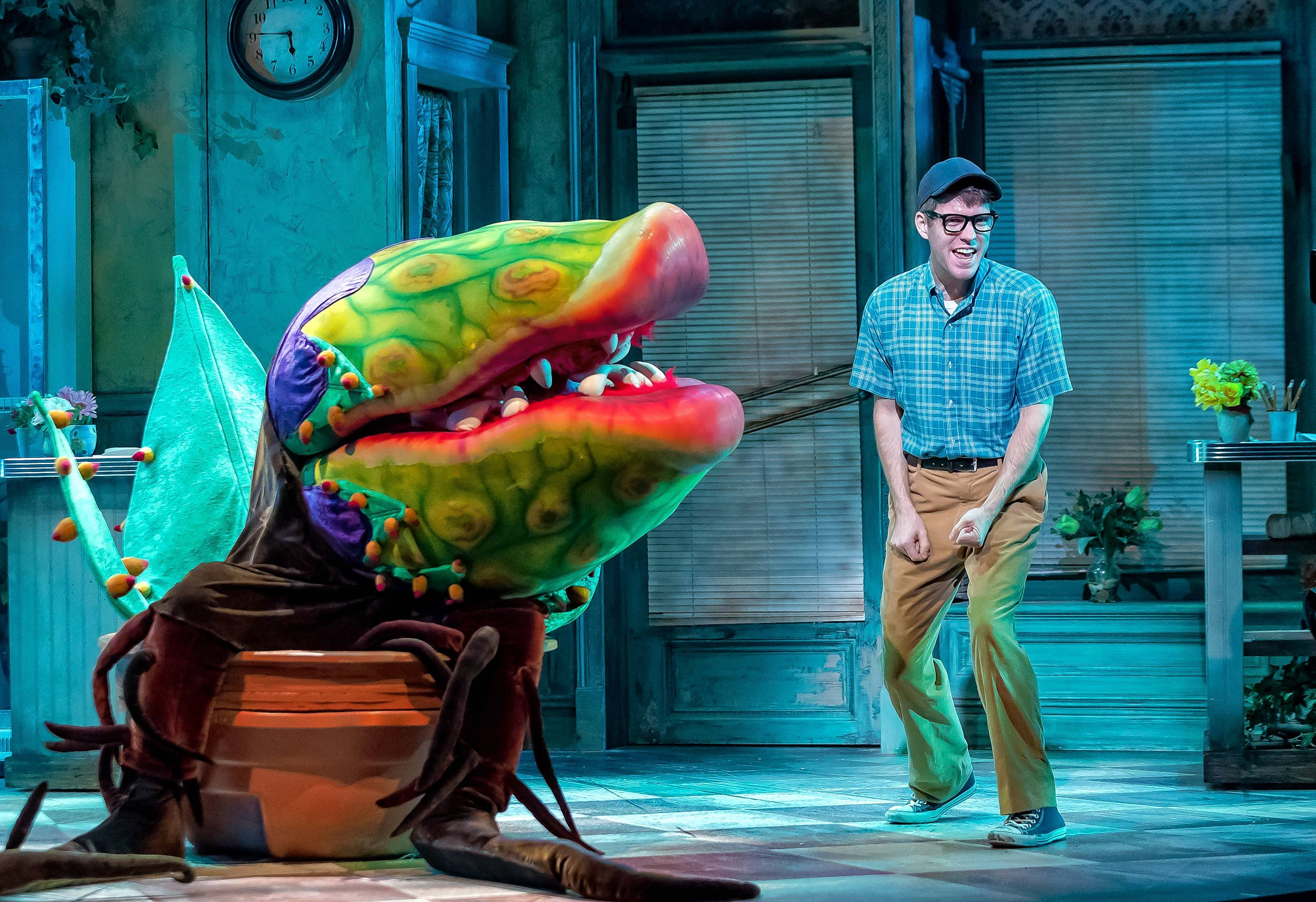 "The flesh-eating plant Audrey II (voiced by Lorenzo Rush Jr. and manipulated by Matthew P. Sitz) convinces Seymour (Will Lidke) to commit dastardly deeds in ""Little Shop of Horrors"" at Drury Lane Theatre in Oakbrook Terrace."