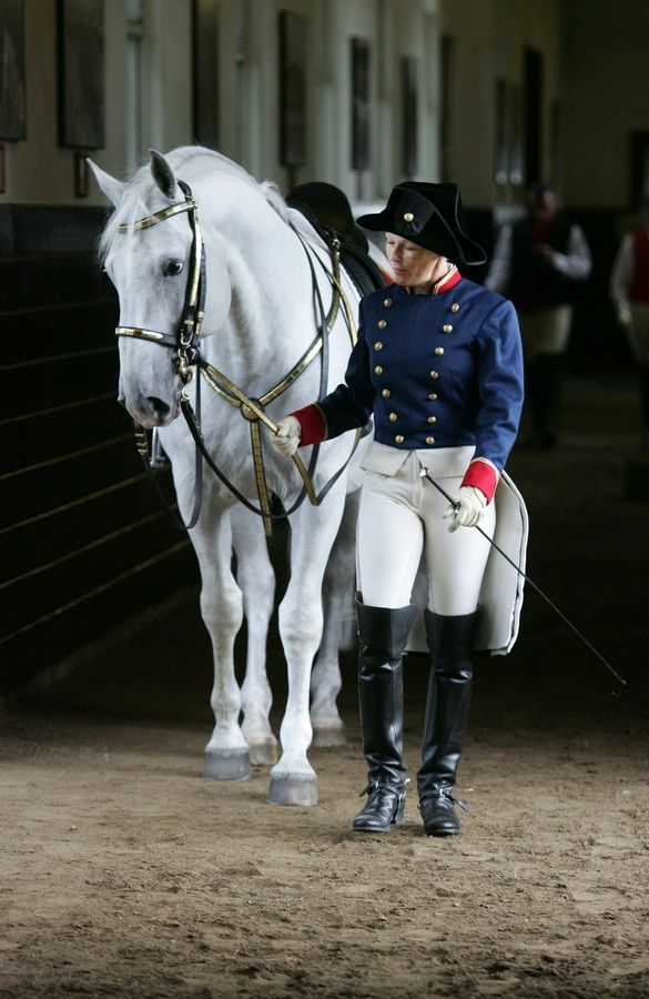See how horses weather the winter with a Tempel Lipizzans Behind-the-Scenes Tour at the Stables and Arena in Old Mill Creek.