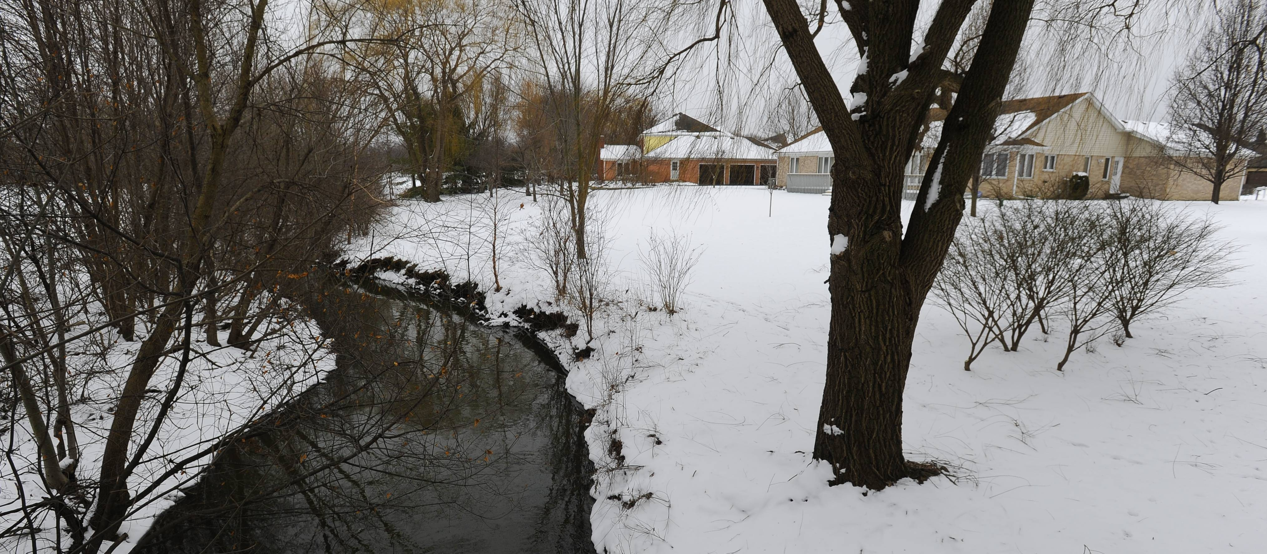 "Prospect Heights officials say they will remove at least two beavers and the dam they've built along McDonald Creek. ""I'm really sad about it, but it's a done deal for now,"" said Agnes Wojnarski, chairwoman of the city's natural resources commission."