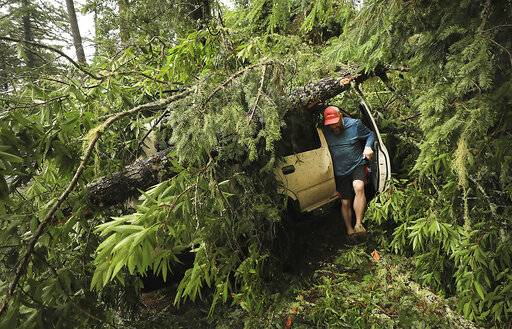 In this Wednesday, Jan. 16, 2019 photo, Shane Francis of Guerneville, Calif., steps out of his SUV after making sure it started up after a large tree fell on it during a wind storm that tore through Sonoma County and northern California. Rain and snow fell from one end of the state to the other, canceling flights, uprooting trees, knocking down power lines and causing localized flooding. (Kent Porter/The Press Democrat via AP)