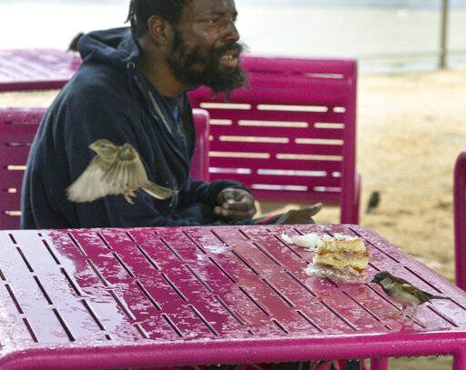 A man shares a part of his sandwich with birds as they seek partial shelter from rain at Grand Park in Los Angeles Thursday, Jan. 17, 2019. Rain and snow fell from one end of the state to the other, canceling flights, uprooting trees, knocking down power lines and causing localized flooding.
