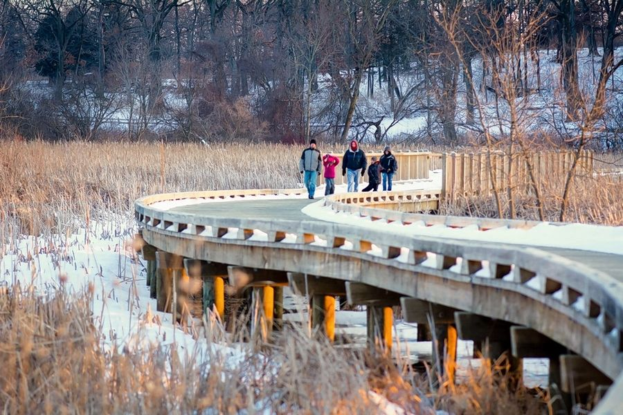 There are 173 bridges and boardwalks throughout the Lake County Forest Preserves, like this one at Hastings Lake near Lake Villa.